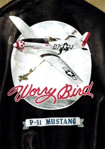 "Ron Kaplan's art clients include many warbird aficionados, including Mike George of Springfield, Ill., owner and pilot of ""Worry Bird,"" who commissioned him to create this flight jacket featuring a restored P-51 from his aircraft collection."