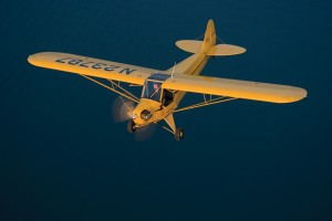 The striking yellow and black paint of the new Legend Cub recalls its predecessor, the famous Piper J-3 Cub.