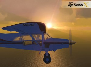 Flight Simulator X puts the user in the aircraft of his or her dreams. The user can modify the livery on this screen shot of a Maule M7-260C.