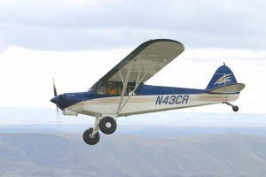 Many features of the traditional Cub are upgraded or new, including an optional blue, white and gold paint style.