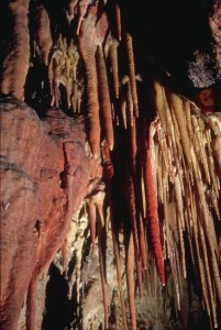 A rainbow of multihued stalactites populates the cave's ceiling.
