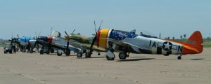 Warbirds are lined up on the tarmac.