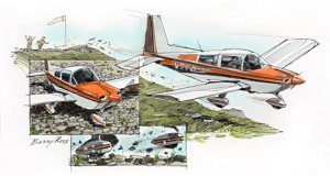 "Forty of Barry Ross' original paintings will be on display, including ""Grumman Cheetah."""